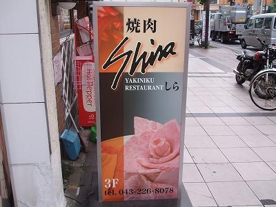 s-shira-1.jpg