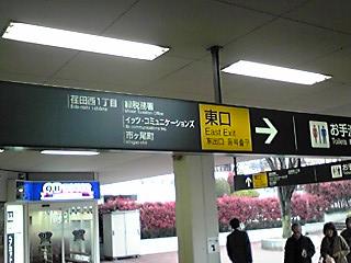 20100405ichigao.jpg