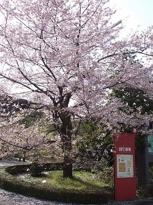 s-2010_0407kokuritsu-2.jpg