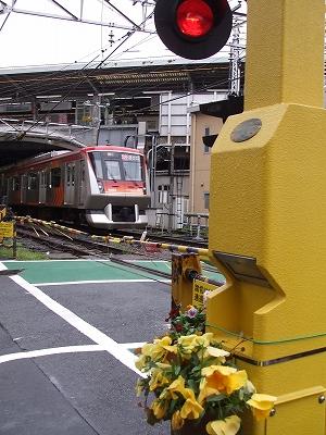 s-2010_0416jiyugaoka-4.jpg