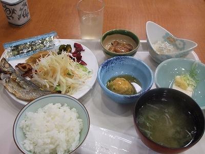 s-2010_0913izu2-8.jpg