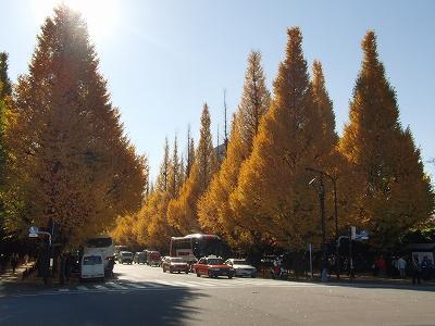 s-2010_1130jingu-gaien.jpg