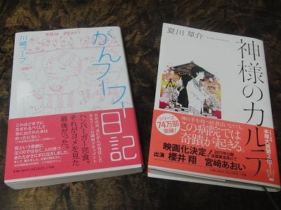 s-2011_0802books.jpg